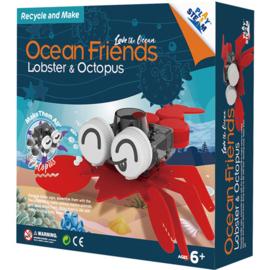 PlaySTEAM – Lobster & Octopus