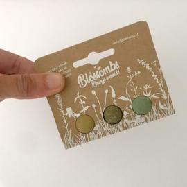 Blossombs -  Bloembommetjes 3 in cadeauverpakking