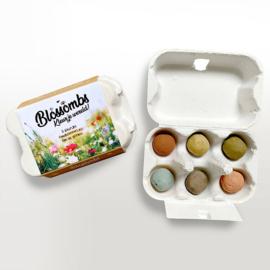 Blossombs - Cadeau eierdoosje (met 6 zaadbommetjes)