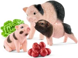 Minivarken en biggetje Schleich (42422)