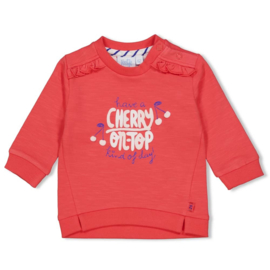 Feetje - Sweater - Cherry Sweetness