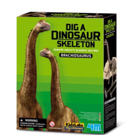 4M Kidzlabs  Brachiosaurus uitgraafkit
