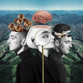 Clean Bandit - What is love? |  CD
