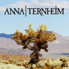 Anna Ternheim - A space for lost time | CD