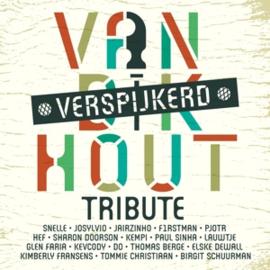 Various - Van Dik Hout verspijkerd | LP -Coloured-
