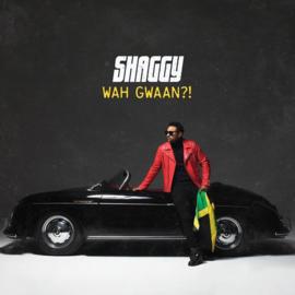 Shaggy - Wah Gwaan?! |  LP -Coloured-