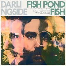 Darlingside - Fish Pond Fish   LP
