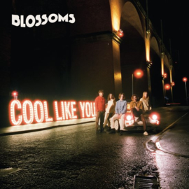 Blossoms - Cool like you   LP