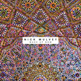 Nick Mulvey - Wake up now | LP -Coloured vinyl-