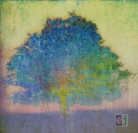 Eric Johnson - Ej   LP