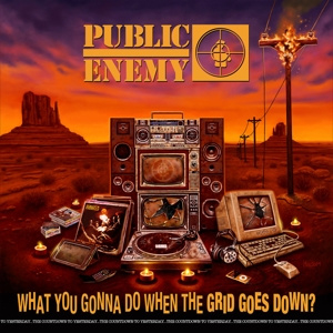 Public Enemy - What You Gonna Do When the Grid Goes Down? | CD