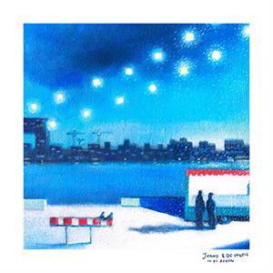 Janne Schra & de Vogels - In de regen    LP -Coloured vinyl-
