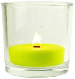 XL Glas inclusief citronella kaars vulling outdoor 250 g
