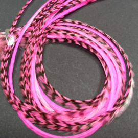 5 x Pink Mix