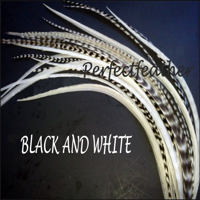 10 x black & white mix