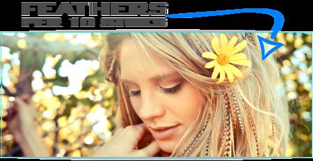feather extensions per 10 stuks