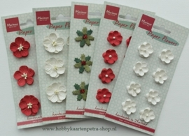 Paper Flowers White RB2233