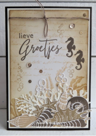 Clear stamps CS1062 - Colorfull Silhouette - Coral
