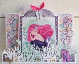 Dutch  Card Art Stepper label 470.713.781