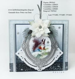 VV1007 Organza lint met ster/sneeuw glitter  25mm.