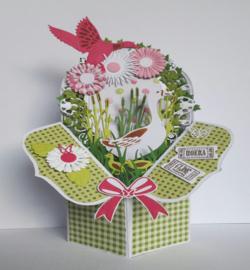 Dutch Box Art Pop out 470.713.055