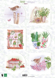 EWK1273 - French antiques herbs