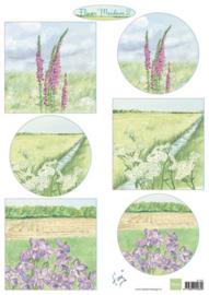 IT602 Tiny's flower meadow 2
