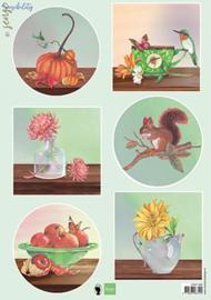 EWK1289 - Sensibility Autumn
