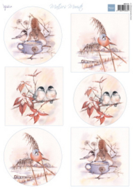 MB0181 Mattie's mooiste winter birds