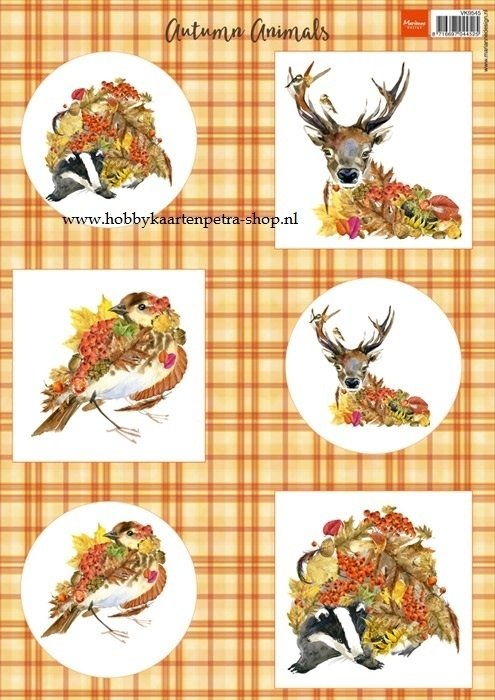 Autumn Animals - Deer VK9545