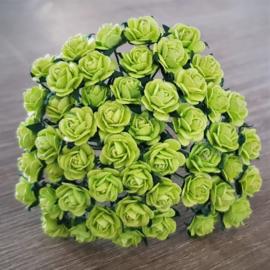 Light Lime Green