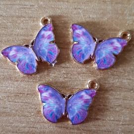 Bedel Vlinder Paars