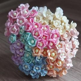 Sweetheart Blossom