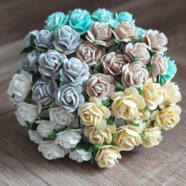 Mixed 5 Open Roses