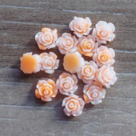 Roosjes Zalm - Oranje
