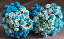 Ocean Mixed Open Roses