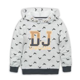 DJ Dutchjeans Sweater (Hoodie) Grey Melee