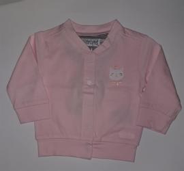 Dirkje Vest Light Pink
