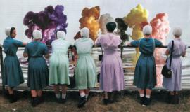 Amish *SOLD*