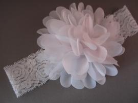Baby/ peuter haarbandje van kant met chiffon bloem 'wit'