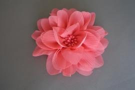 Grote bloem 'koraal'