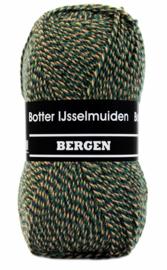 Botter IJselmuiden Bergen nr. 185