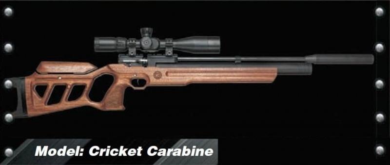 KalibrGun Carabine 5.5 en 6.35 mm