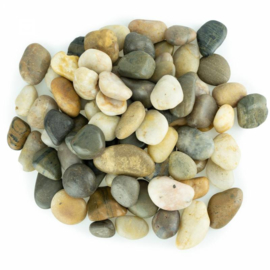 Back Zoo Nature River Stones S