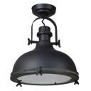 Plafondlamp Harvey, mat zwart