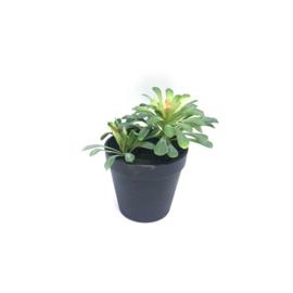 fake vetplant 16,5x13x16,5 cm