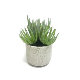 Fake vetplant 18x15,5x19 cm