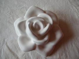 5175 Volatile aromasteen Roos