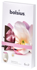 Bolsius - True Scents (waxmelts) Magnolia 6  stuks