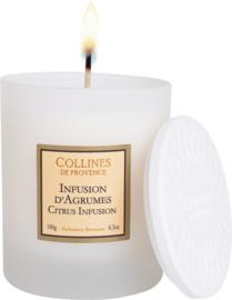 Collines de Provence - Geurkaars Citrusvrucht Infusie 180 gram.